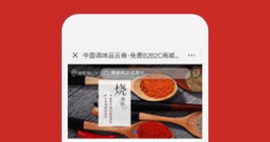 重庆渝里红农业开发有限公司云商PLUS高级版