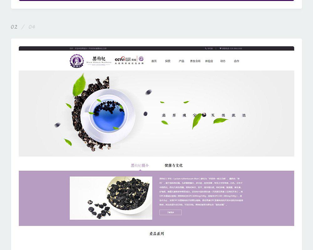 黑枸杞网站-黑琪尔-3.jpg