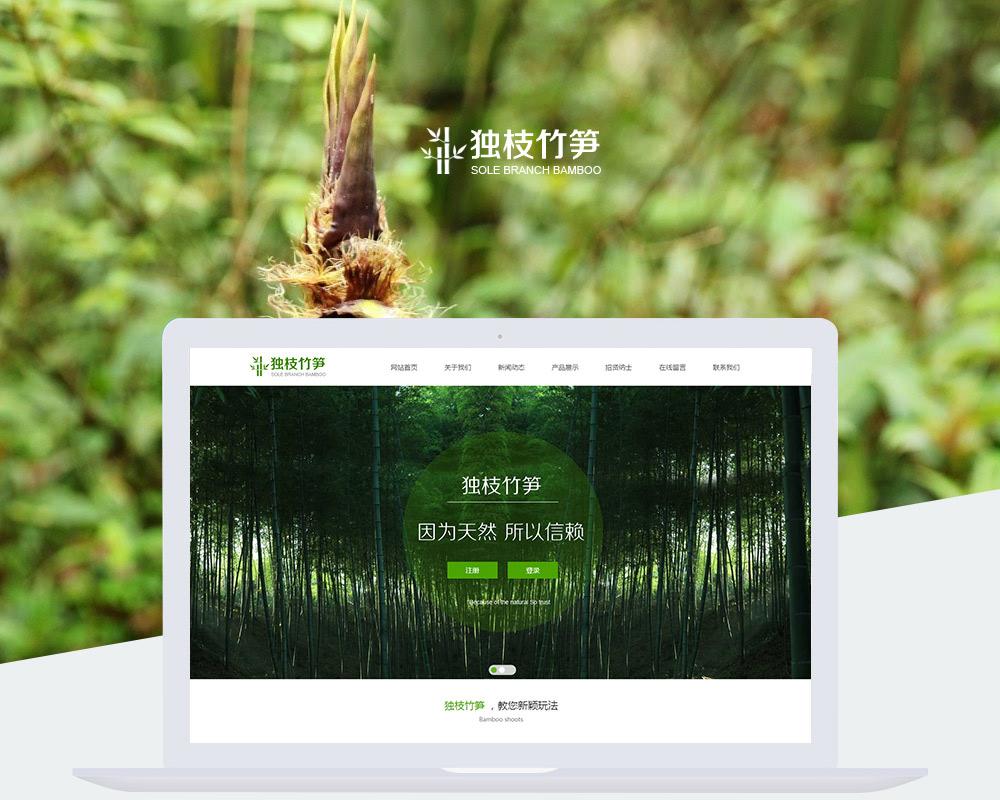 特产营销型网站-独枝竹笋-1.jpg
