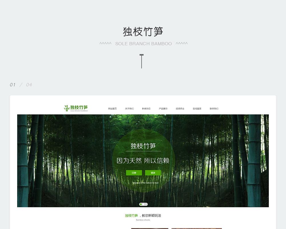 特产营销型网站-独枝竹笋-2.jpg