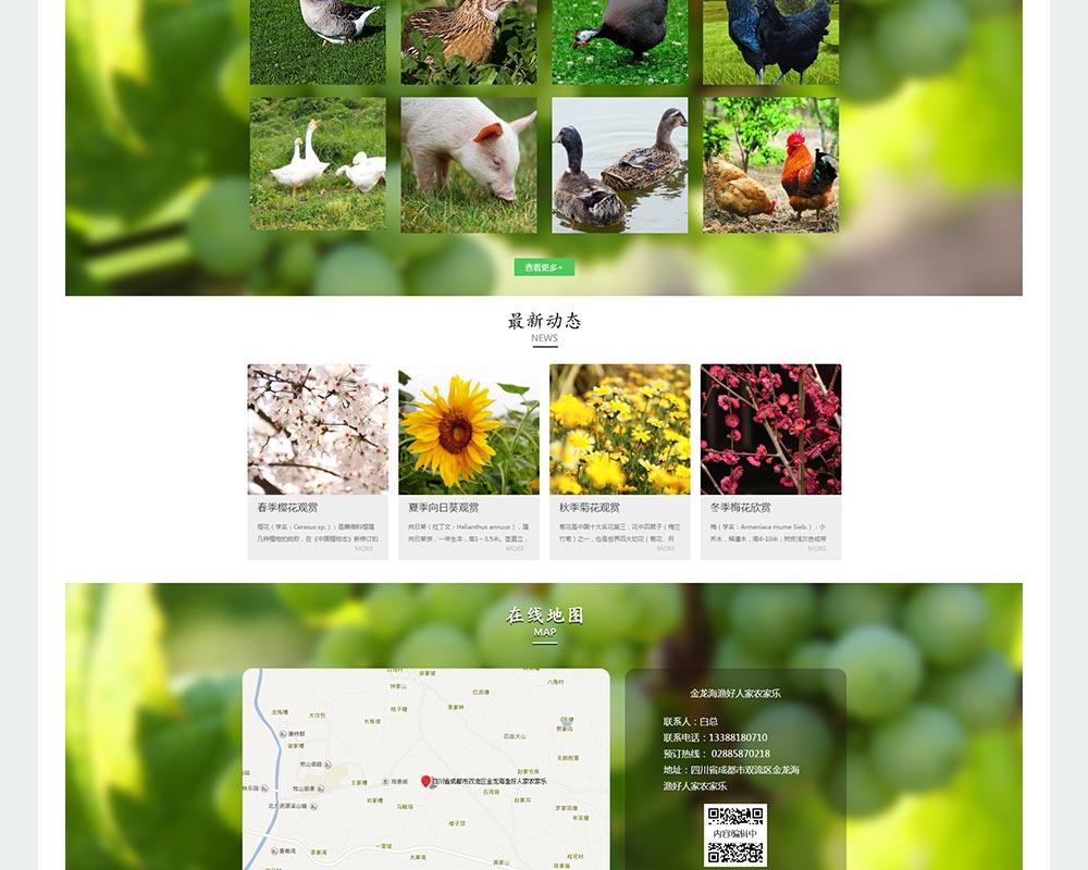 农家乐网站-金龙海渔好人家-4.jpg