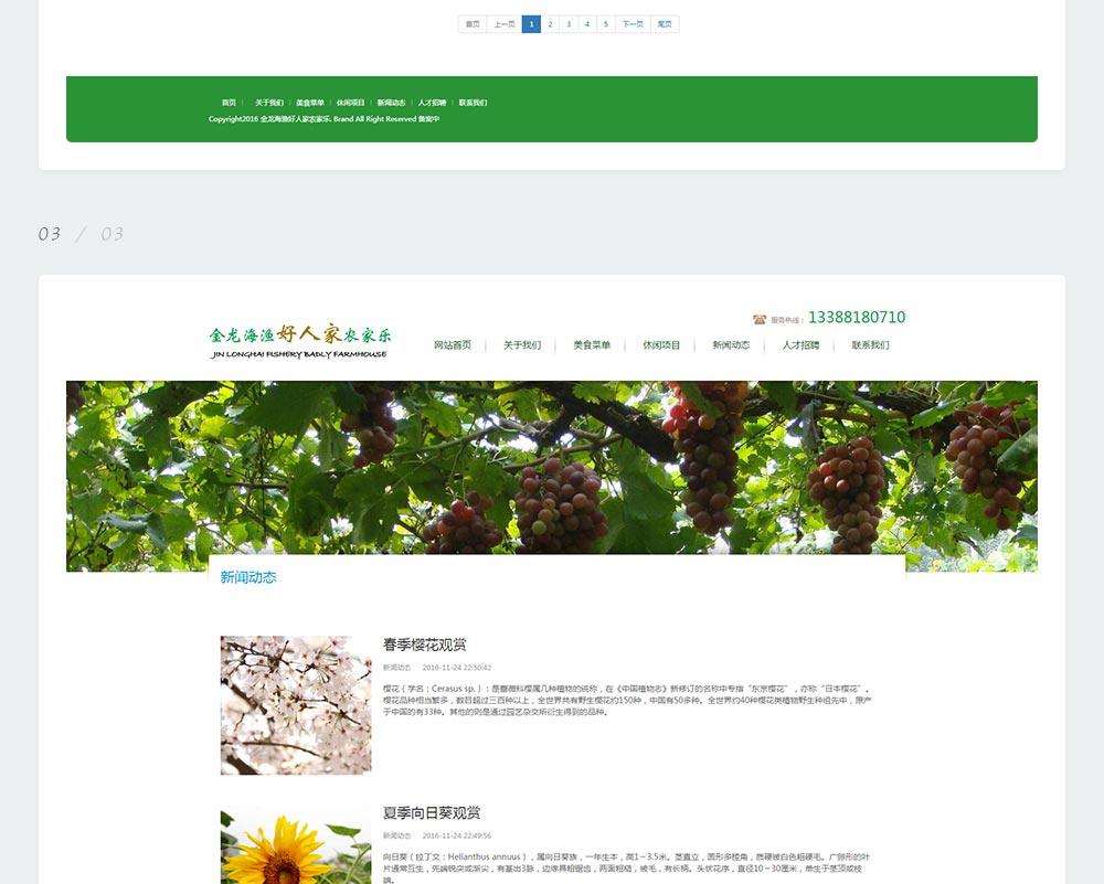 农家乐网站-金龙海渔好人家-6.jpg