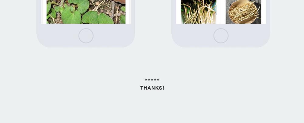 产品加盟网站-折之源-8.jpg