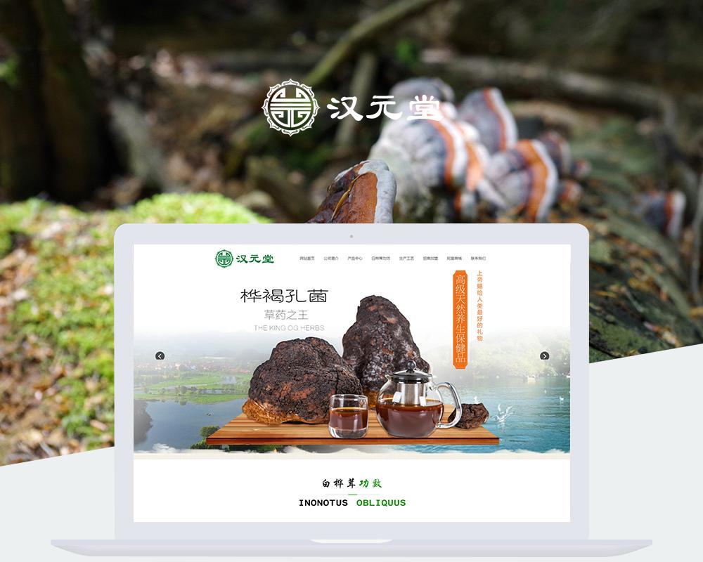 保健品网站-汉元堂商贸-1.jpg
