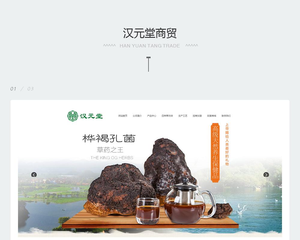 保健品网站-汉元堂商贸-2.jpg