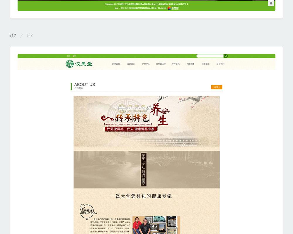 保健品网站-汉元堂商贸-6.jpg
