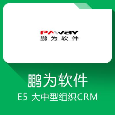 鹏为E5-中大型企业的平台化智能CRM
