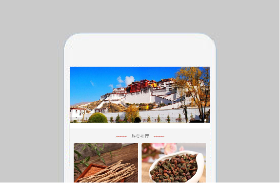 西藏土特产网商城