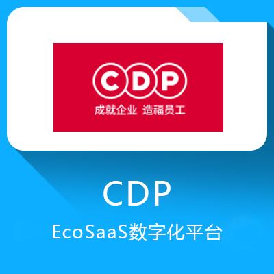 CDP-EcoSaaS数字化平台