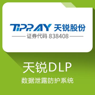 天锐DLP-数据泄露防护系统
