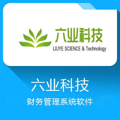 六业科技-财务管理系统软件