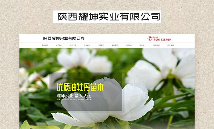 陕西耀坤实业有限公司