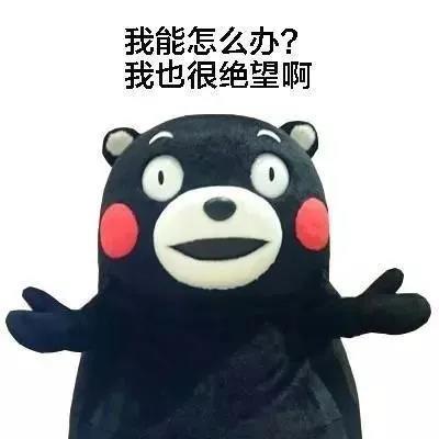 """老板卖货不发愁,万商云集""""双十一""""狂欢节报名开启!"""