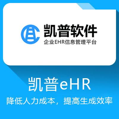 凯普eHR-有效降低人力成本,提高生成效率,每月节省