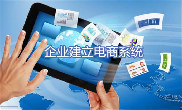 企业建立电商系统5步法:成功与否在于系统能否满足企业需求