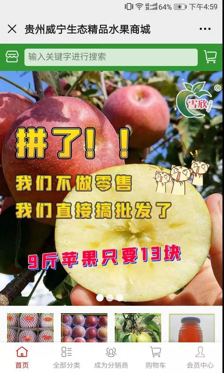 他们家的网红苹果,每个晒足1850小时!