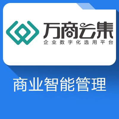 数林BI-实现全集团多组织多账套的数据管理