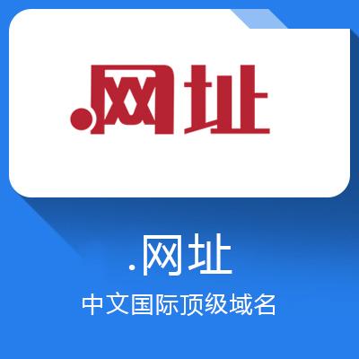 .网址域名-中文国际顶级域名