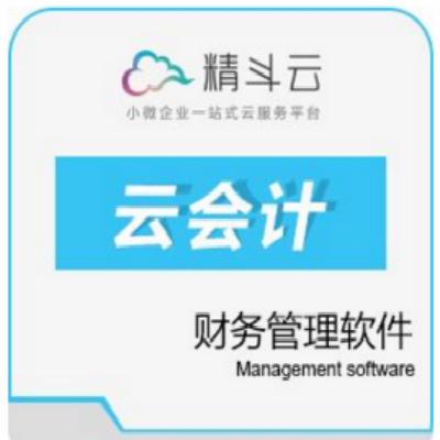 金蝶精斗云云会计-颠覆传统财务工作模式
