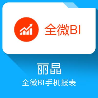 丽晶全微BI—服饰行业的数据分析轻应用