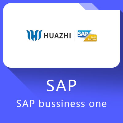 SAP b1_SAP bussiness one-面向小型企业的ERP