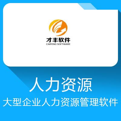 才丰DHR-大型企业人力资源管理软件