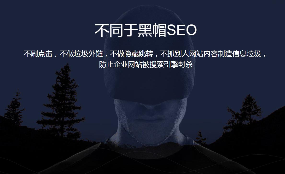 网总管-AI搜索排名-16.png
